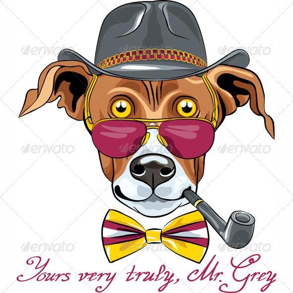 GraphicRiver Cartoon Hipster Greyhound Dog Breed 6201280