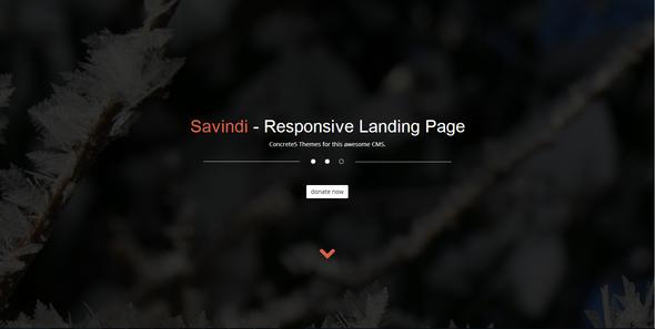 ThemeForest Savindi Responsive Landing Page 6201498