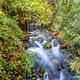 River Majaceite - PhotoDune Item for Sale