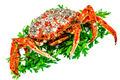 Spider Crab - PhotoDune Item for Sale
