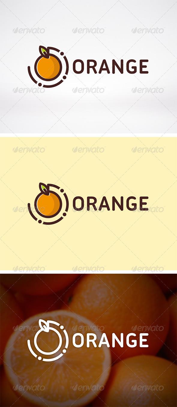 GraphicRiver Orange Logo Template 6206343