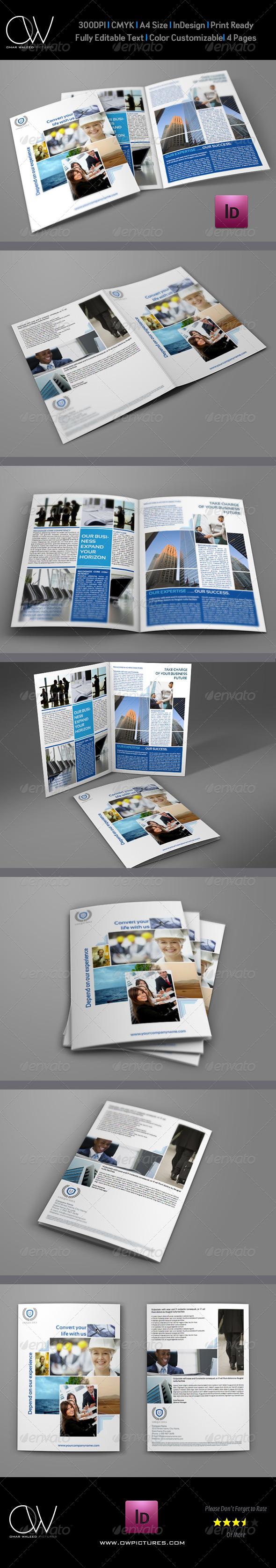 GraphicRiver Company Brochure Bi-Fold Template Vol.4 6207463
