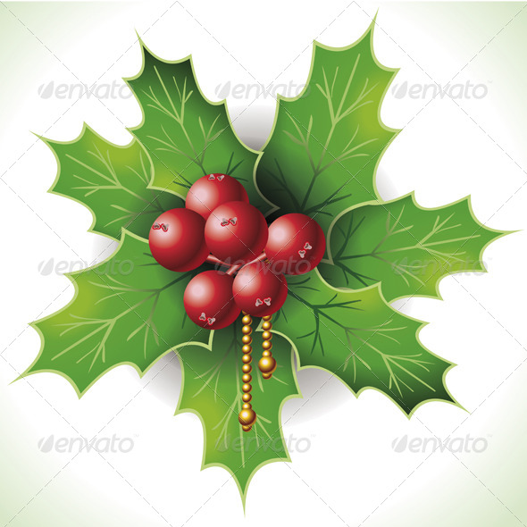 GraphicRiver Holly Buxus Isolated on White 6208445