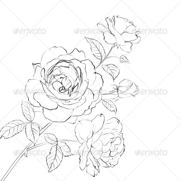 GraphicRiver Contour of Rose 6214186