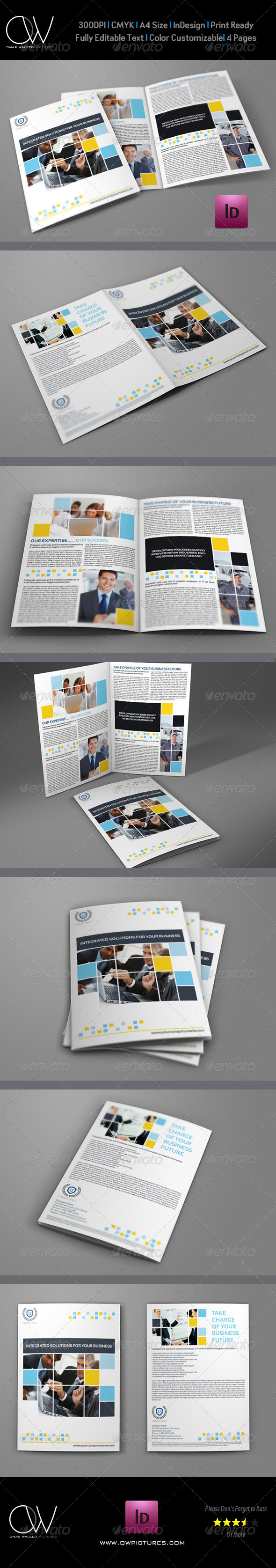 GraphicRiver Company Brochure Bi-Fold Template Vol.6 6216835