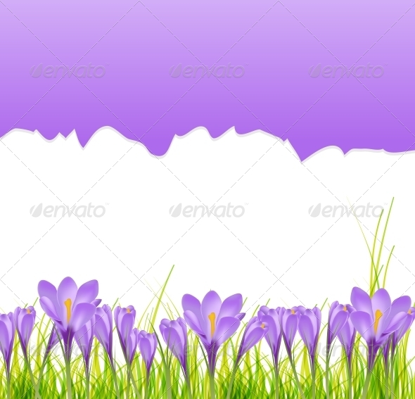 GraphicRiver Vector Illustration Crocus Flower Background 6219648