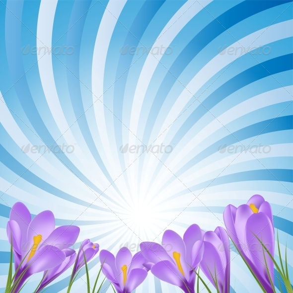 GraphicRiver Vector Illustration Crocus Flower Background 6219657