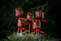 Chocolate marshmallow deers for Christmas - PhotoDune Item for Sale