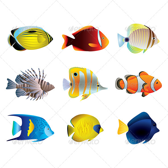 GraphicRiver Tropical Fishes Vector Set 6232691
