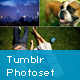 Tumblr Photoset Grid/Masonry Gallery for WordPress
