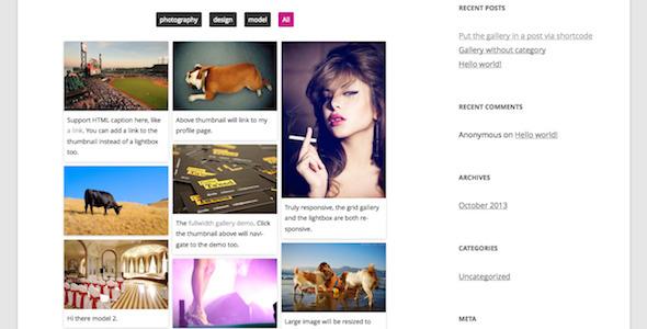 Responsive Pinterest Grid Gallery WordPress Plugin - CodeCanyon Item for Sale