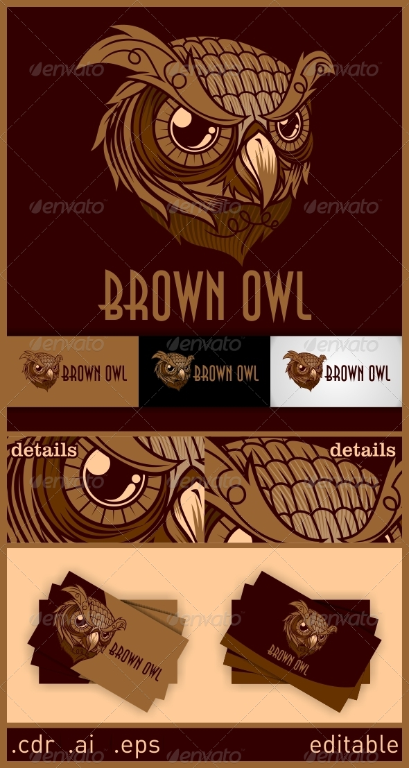 GraphicRiver Brown Owl Logo 6246512