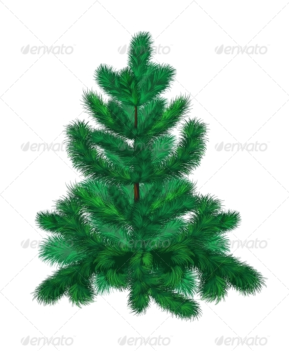 GraphicRiver Green Fir Tree 6252276