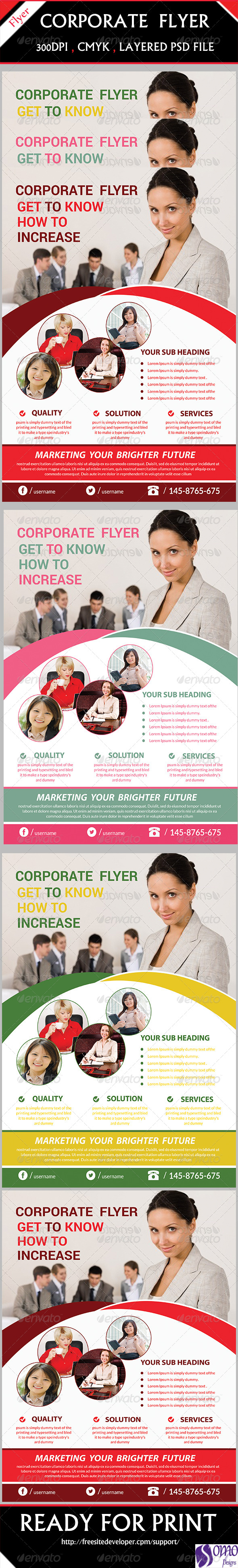 GraphicRiver Corporate Flyer 6244544