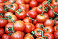 Fresh Tomatoes - PhotoDune Item for Sale