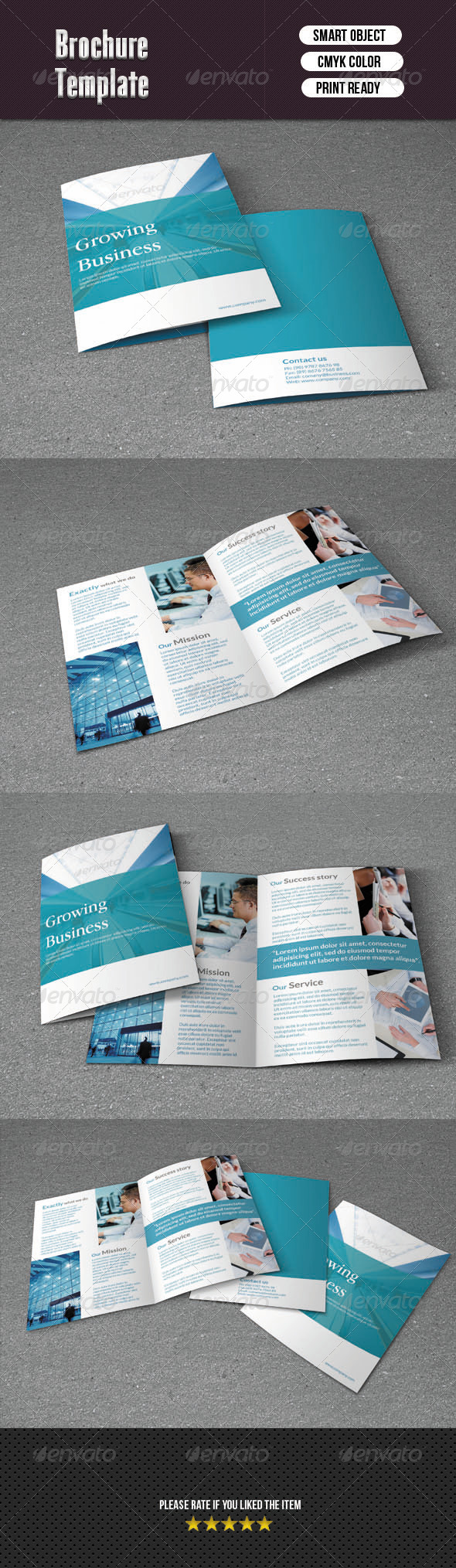 GraphicRiver Bifold Brochure-Business 6277759