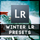 14 Winter Edition Pro Presets - GraphicRiver Item for Sale