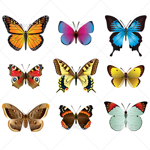 GraphicRiver Butterflies Photo-Realistic Vector Set 6293834