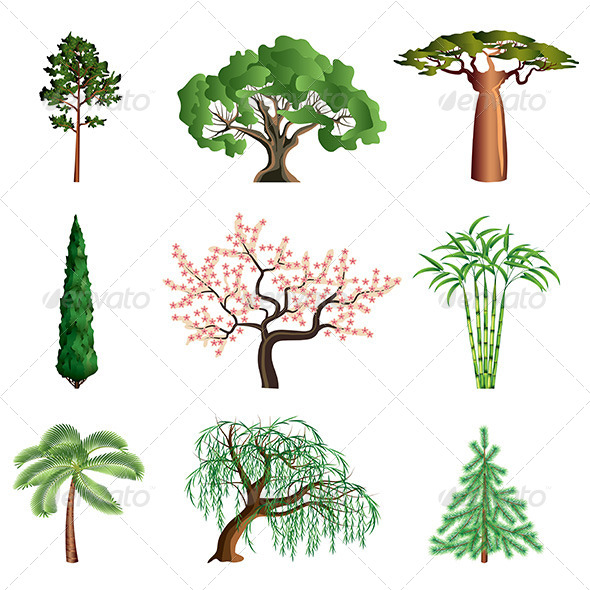 GraphicRiver Trees Isolated on White Vector Set 6293844