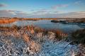 morning sunlight over winter swamp