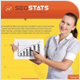 Seo Stats Flyer - GraphicRiver Item for Sale