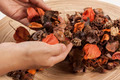 Potpourri hold in hands - PhotoDune Item for Sale
