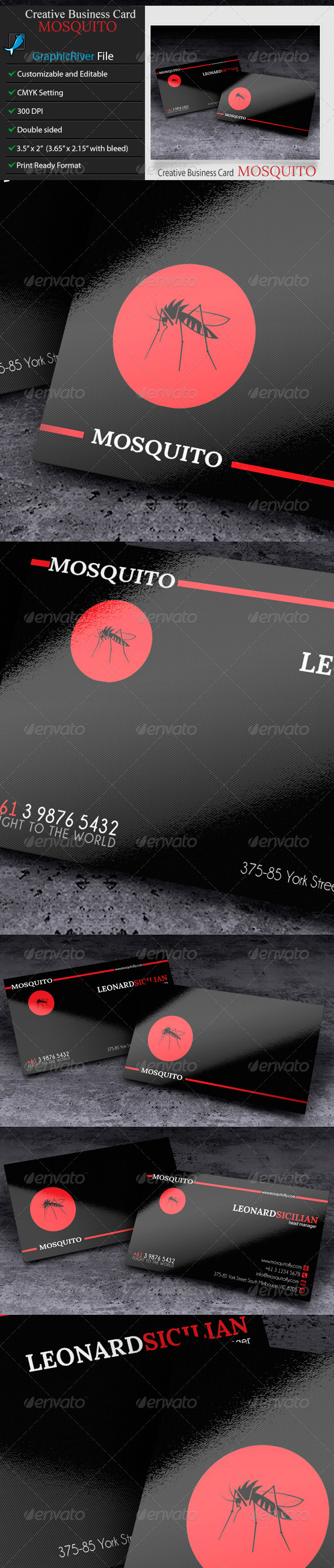 Creative or Corporate Business Card Mosquito