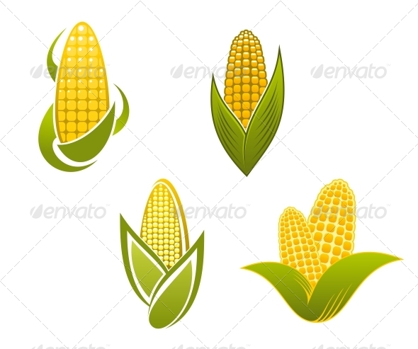 GraphicRiver Yellow Corn Icons and Symbols 6311222