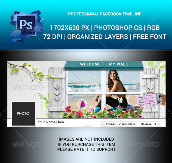 GraphicRiver Professional Facebook Timeline Cover 6314255