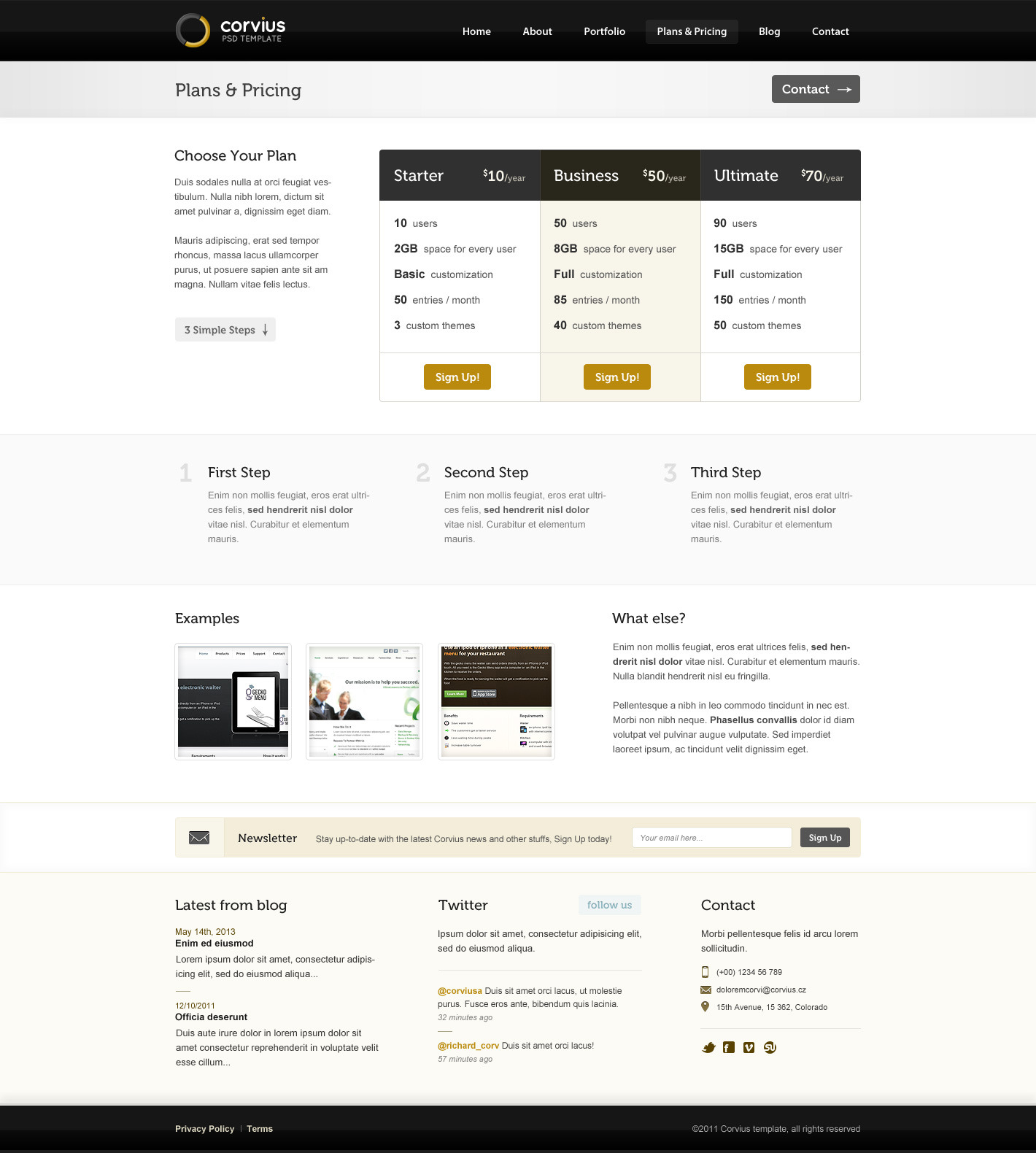 Corvius - Business PSD Template