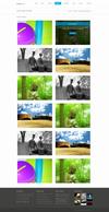 14.2stylish_image_hover_effect.__thumbnail