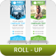Corporate Roll-Up Banner Vol 4