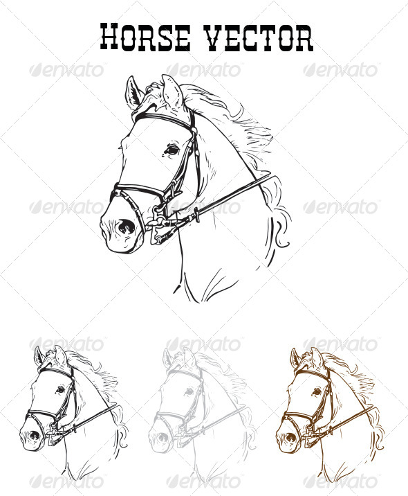 GraphicRiver Horse Vector 6329615