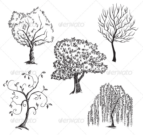 GraphicRiver Vector Trees Collection 6331990
