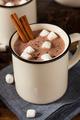 Gourmet Hot Chocolate Milk