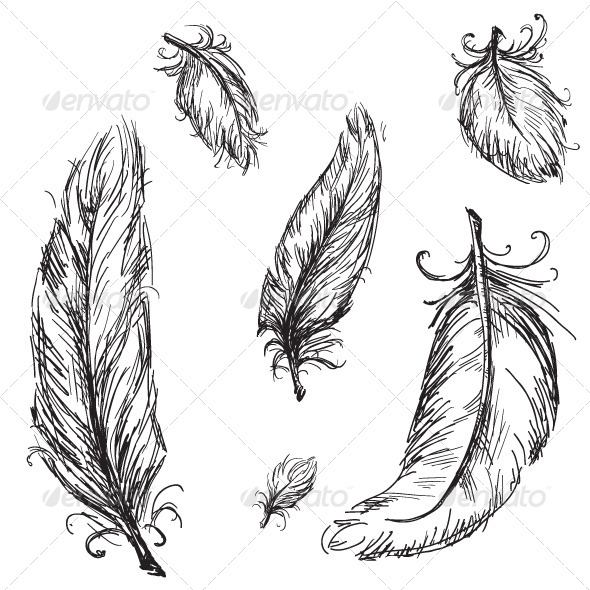 GraphicRiver Collection of Feathers 6344597