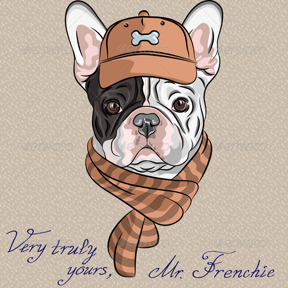 GraphicRiver Vector Hipster Dog French Bulldog Breed 6348136