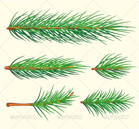 GraphicRiver Pine Branches 6352189