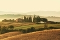 Scenic view of typical Tuscany mist landscape - PhotoDune Item for Sale