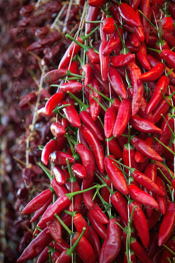 Hot peppers - Stock Photo - Images