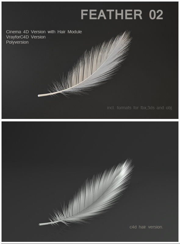 Feather 02 - 3DOcean Item for Sale