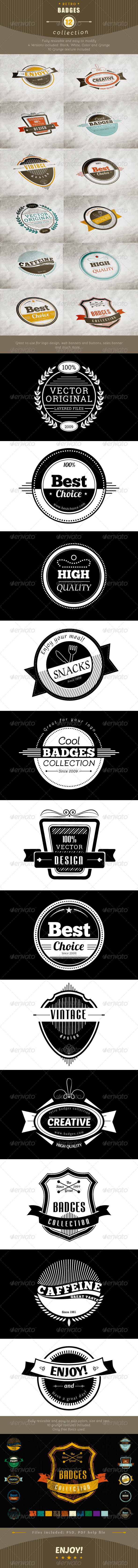 GraphicRiver 12 Retro and Vintage Badges 6356910