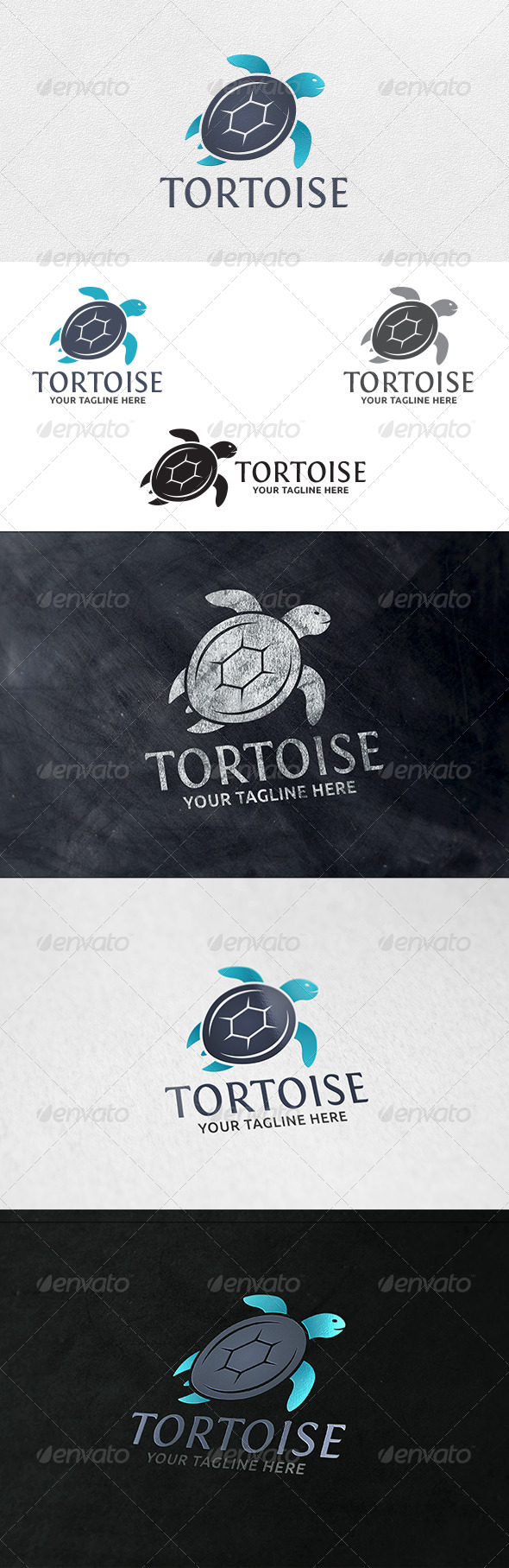 GraphicRiver Tortoise Logo Template 6360962