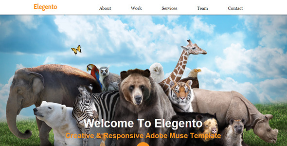 Elegento - Multi-Purpose One Page Muse Template