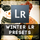 6 Winter Edition Pro Presets - GraphicRiver Item for Sale
