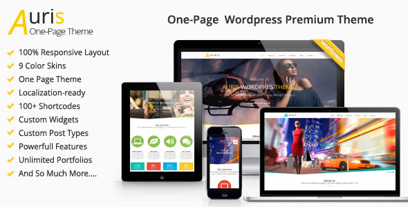 ThemeForest Auris One Page Responsive WordPress Theme 6201048