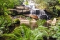 Beautiful waterfall in the jungle. - PhotoDune Item for Sale