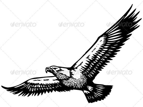 GraphicRiver Eagle Vector 6367319