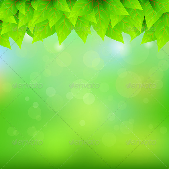 GraphicRiver Natural Green Background 6375165