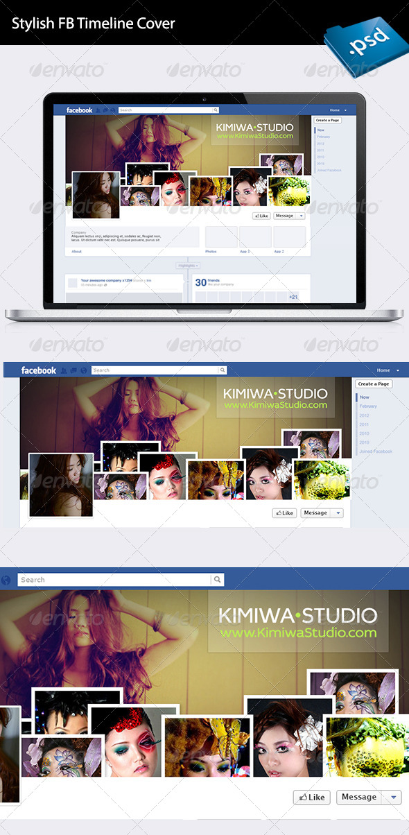 GraphicRiver Stylish FB timeline cover 6379418